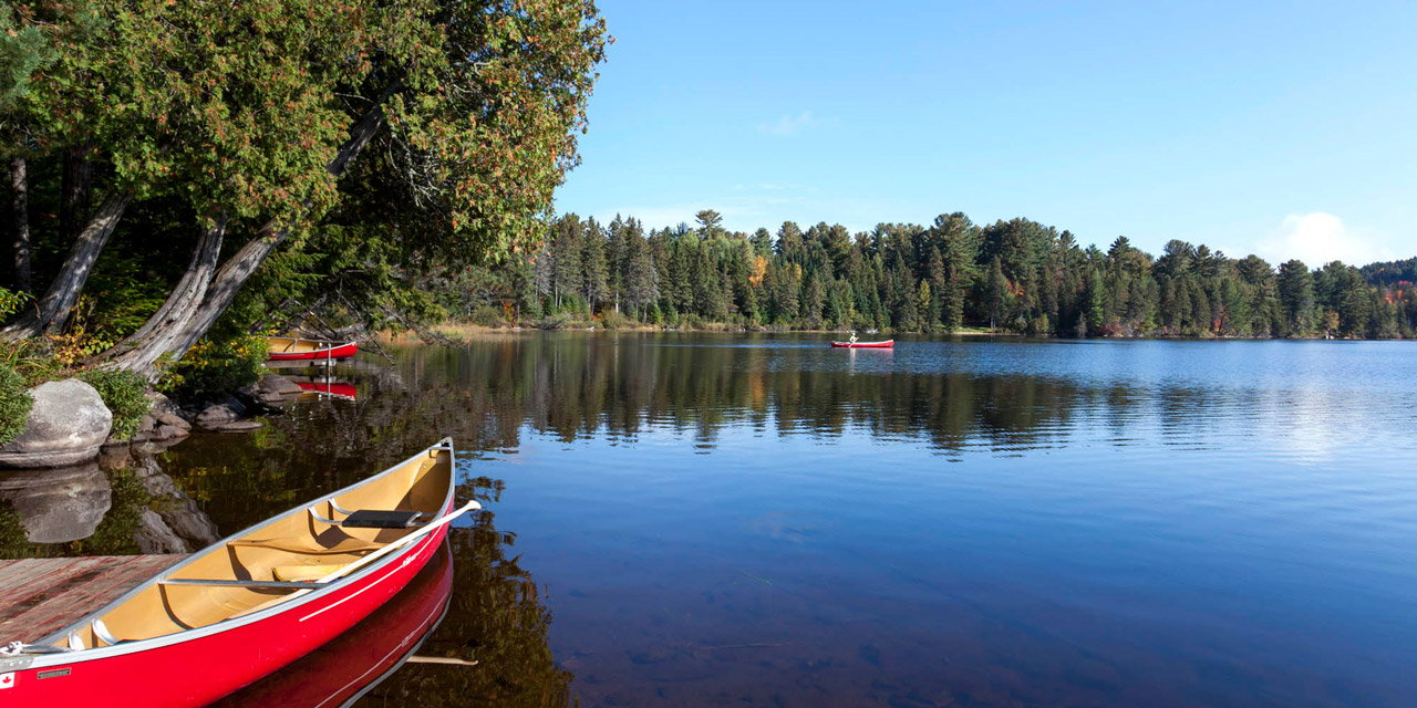 peaceful quiet moring canoe paddle