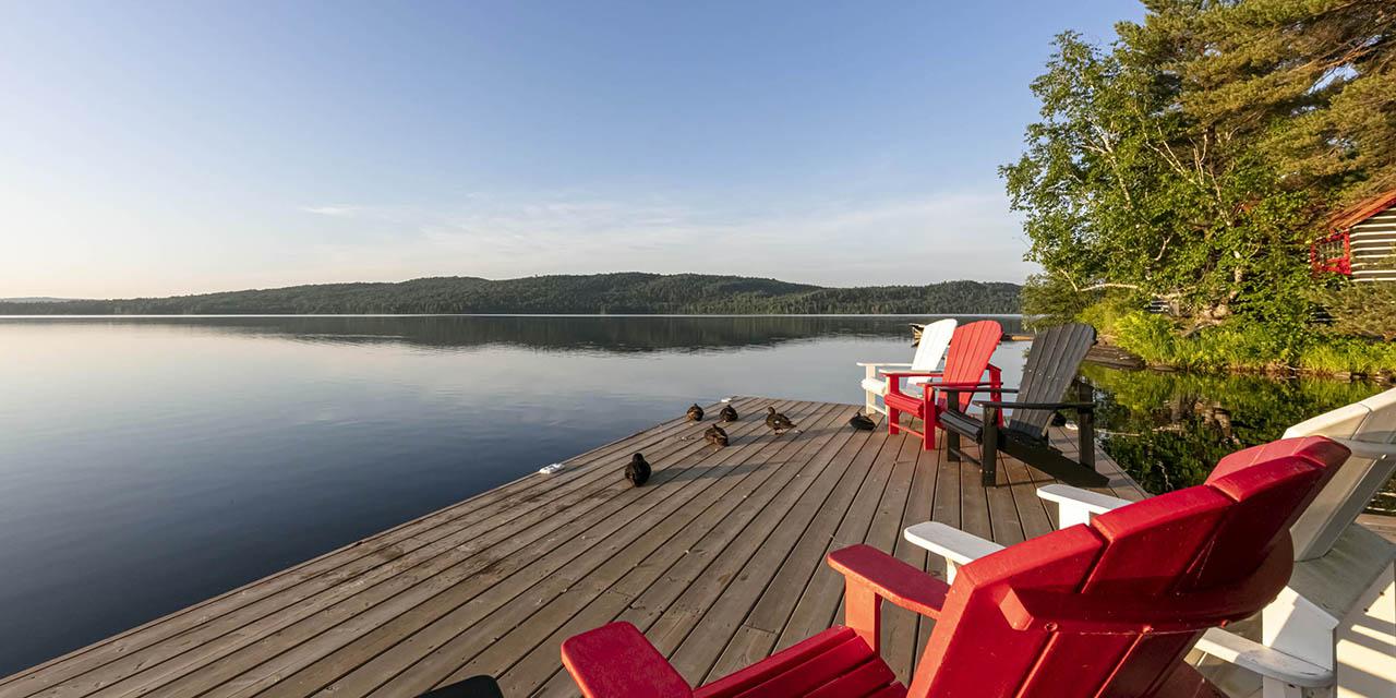 ducks on dock morning lake view