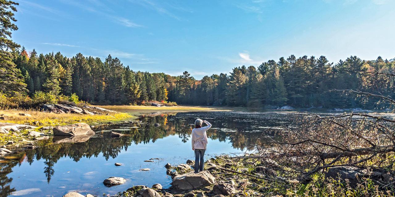 exploring the cenntenial hiking trails