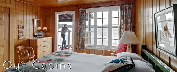 Cabins image link