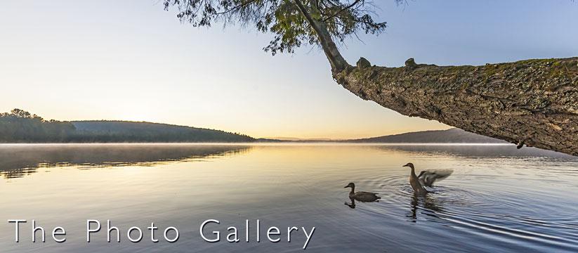 Photo tour lake image link