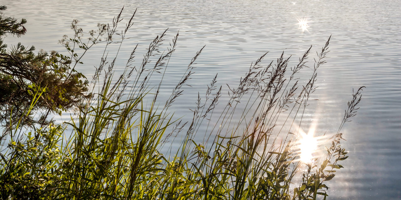 reflections-lake-grasses-lake-of-two-rivers