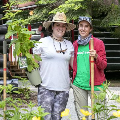 lodge native species planting