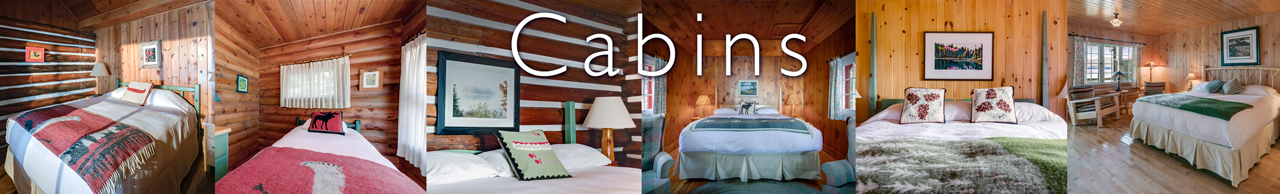 algonquin cabin accommodations link